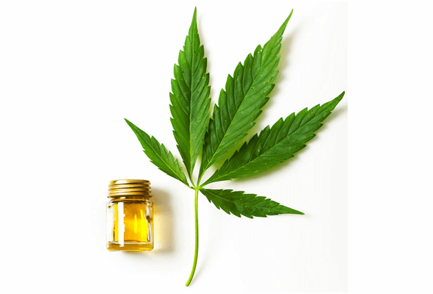 how to choose the right CBD oil Detailed Guide